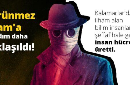 """""""GÖRÜNMEZ ADAM""""A DOĞRU ADIM ADIM! ŞEFFAF İNSAN HÜCRESİ ÜRETİLDİ!"""